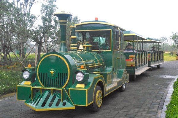 treno elettrico 42 posti(1)